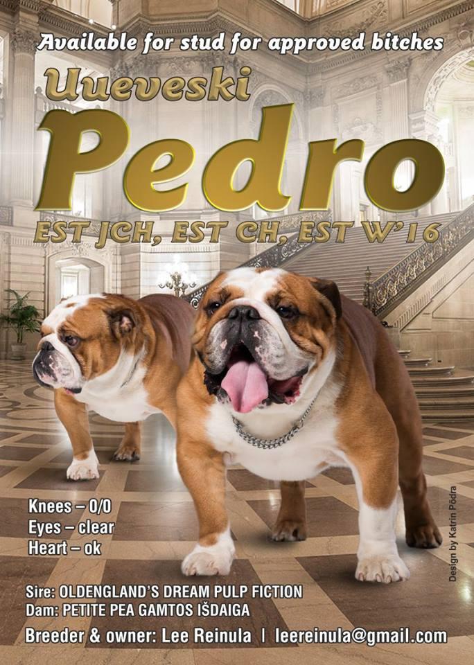 Uueveski Pedro (Peedu)